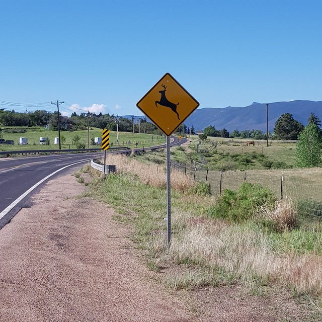 Tue, 05/29/2018 - 08:57 - Deer crossing - didn't see any, but beautiful countryside