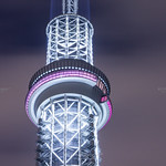 Tokyo Night.