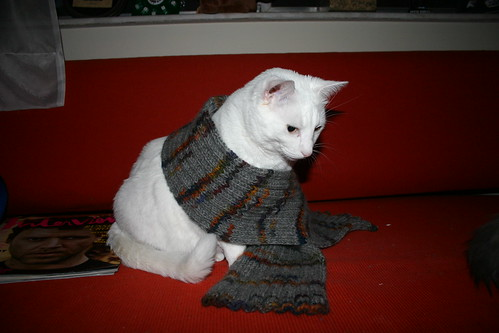 Sam is quite the knitter - he whipped up this scarf in 2 weeks.