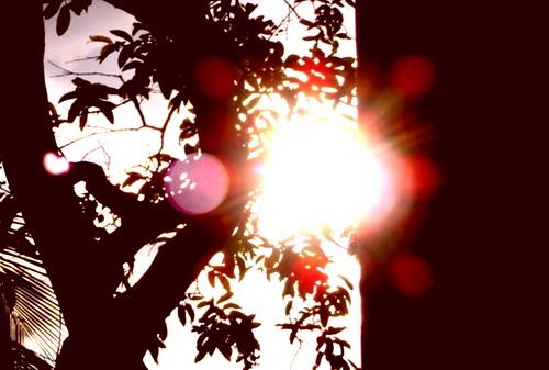Estás viendo directo al sol