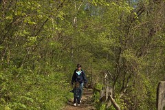 hiking in rock creek park
