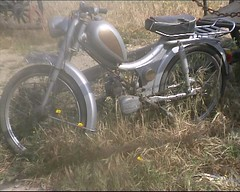 Motorizada Flandria