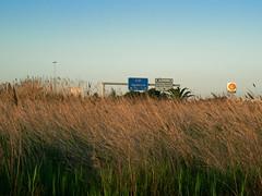 Autopista-i-marjal