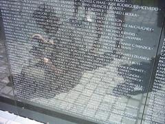 The Vietnam Memorial panel 42E