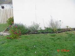 garden 2003 2