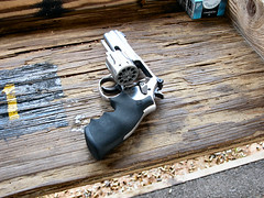 the New Gun