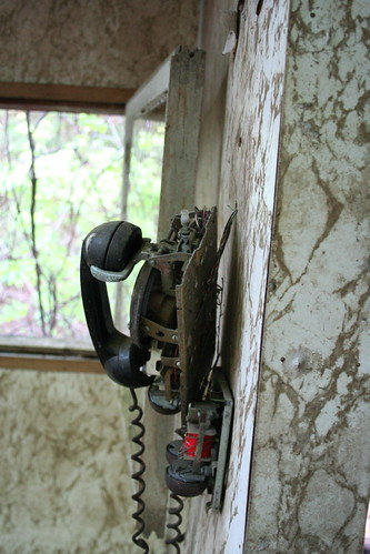 Ring Ring | by MikeWebkist