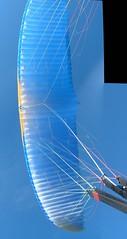 Bionic 2