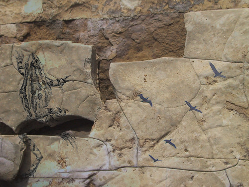 birds on stone