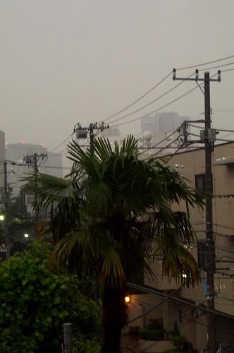 Tokyo under the rain