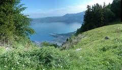 panoramic - Lac Leman - Vevey-Montreux