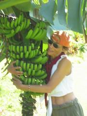 nine banana bunches
