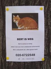 Bert Is Weg | by ElseKramer