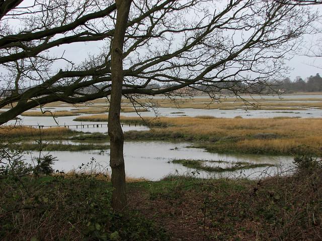 The River Deben at Waldringfield