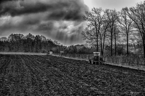 goodluck arableland plowing spring revival rain crowds earth life help work farm next good expectation landscape field trees sky blackandwhitephotography