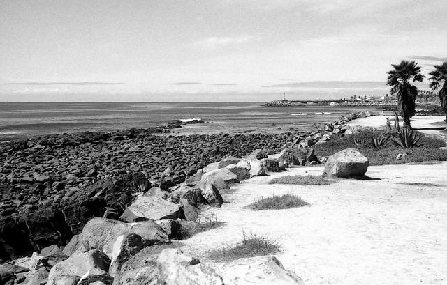 Mar y Tierra (Nikon F2 Marzo 18024)