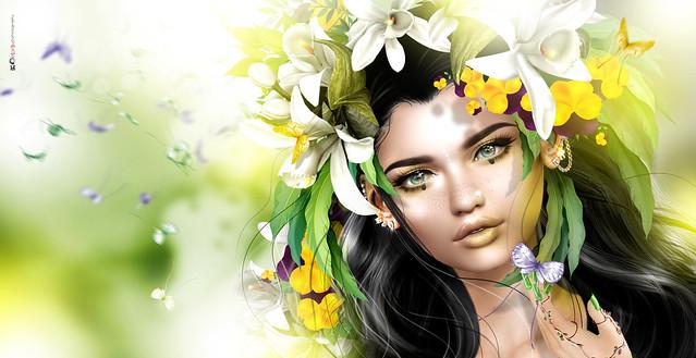 🌻 Princess Butterflies... 🌻