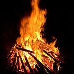 2009-12-12 Waldweihnachten