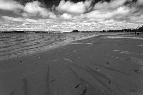 kopachukstatepark landscape ocean shore beach sand cloudscape naturescenes naturetherapy naturalpatterns sea sky water bay monochrome