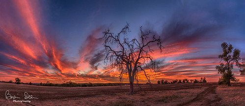 wa housesitting facebook yorkhouse flickr slideshow sunset submitted agrade awarded 20180702judging 2018tour clubcompetition caravaning clubopenprojected aspleycameraclubcaravaning merit landscape pano pan25yearpanoramicimages 20180205judging