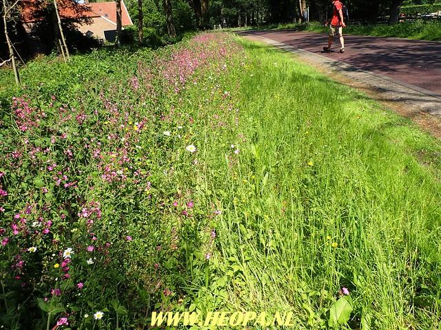 2018-05-26             3e Dag Diever    40 Km   (117)