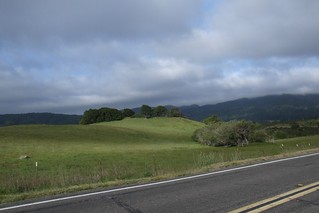 At the end of Bolinas Ridge trail, sunshine and shadow