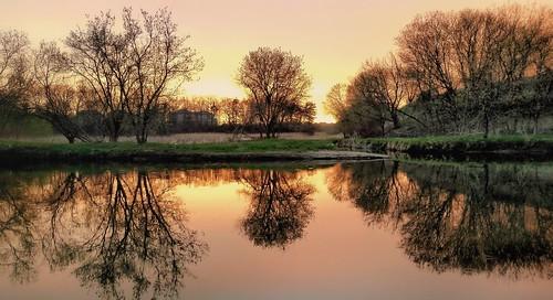urbanoasis tranquility reflection sunrise riverside ontario nature stillness