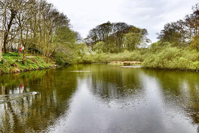 Walker Dam - Aberdeen Scotland - 3/5/2018