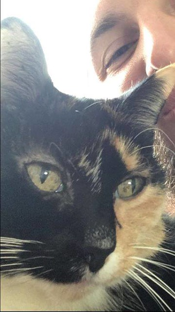 Lost tortie / calico cat in #panoramahills 403-971-7721. Pls rt watch share help to find Ruby! YYC Pet Recovery shared Jana Wilder's post. Ruby lost on Panatella St Nw, Panorama hills. Has been missing since April 26th/2018. Please contact Martin if you h