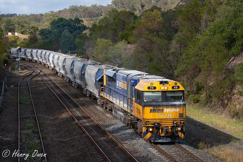 tt116 ttclass emd diesel downeredi gt46ace pn pacificnational stonetrain freighttrain 2291 picton