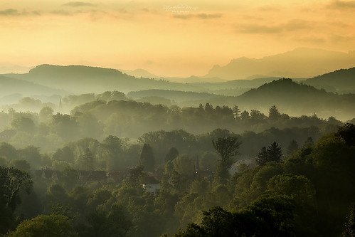 switzerland schweiz sunrise sonnenaufgang morning morgen landschaft landscape berge mountains gebirge alpen alps bäume trees häuser houses nebel morgennebel dust fog morningfog bern