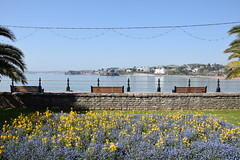 Floral Torquay seafront