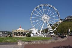 Riviera observation wheel