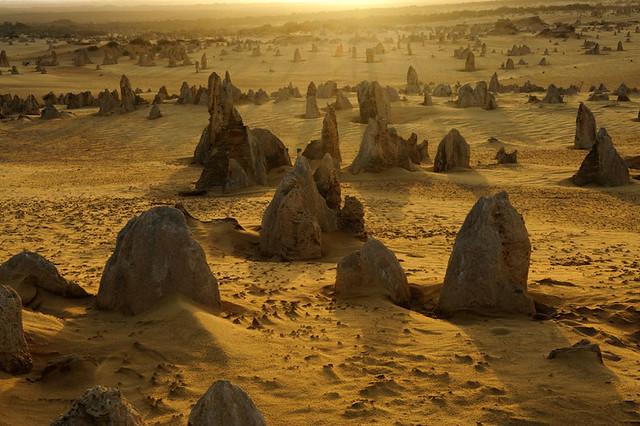 Statues-aiguilles-parois-dentelees-les-pinacles-de-pierre-dansent-sur-le-sable-jaune-du-desert-de-Nambung