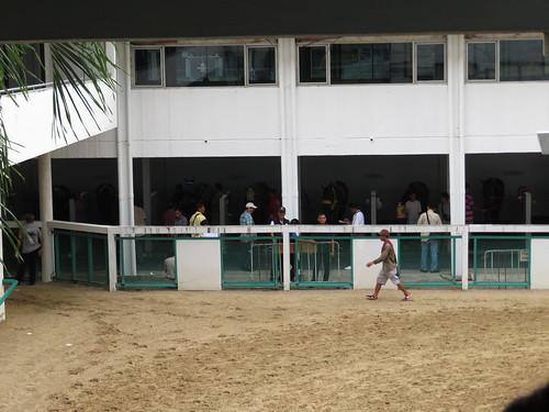 タイの競馬場の装鞍所の脇にある馬房