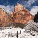 Road Trip 42 - Utah - Zion National Park