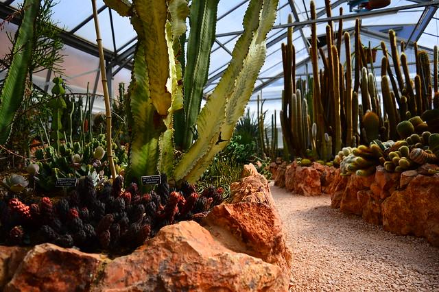 Jurassica Jardin Botanique in Porrentruy