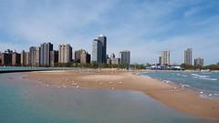 North Avenue Beach