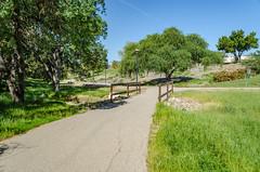 2018-04-23 Centennial Park Trail hike-07.jpg