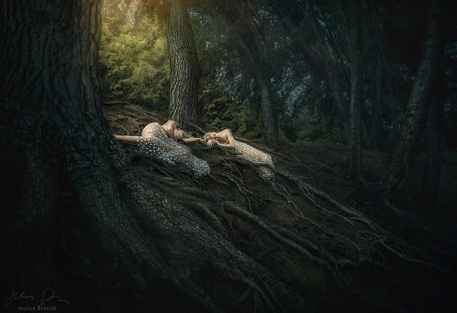 Earthday Fairytale