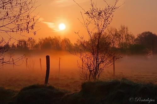 sunrise magical naturschutzgebiet sonneaufgang
