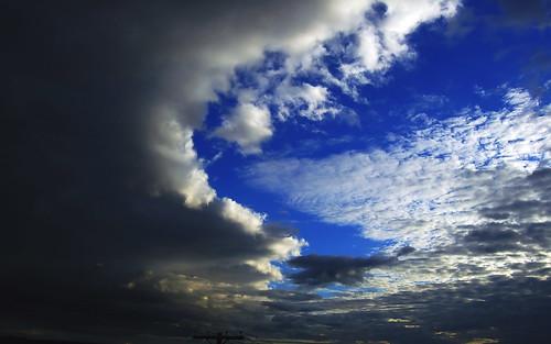 sky d50 1000views
