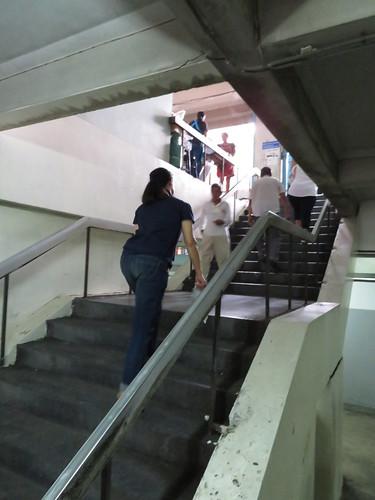 ロイヤルターフクラブ競馬場の1階から2階へ上がる階段