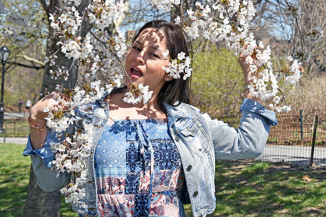 Picture Of Carolina Taken During A Cherry Blossom Photo Shoot In Central Park In New York City. Photo Taken Saturday April 21, 2018