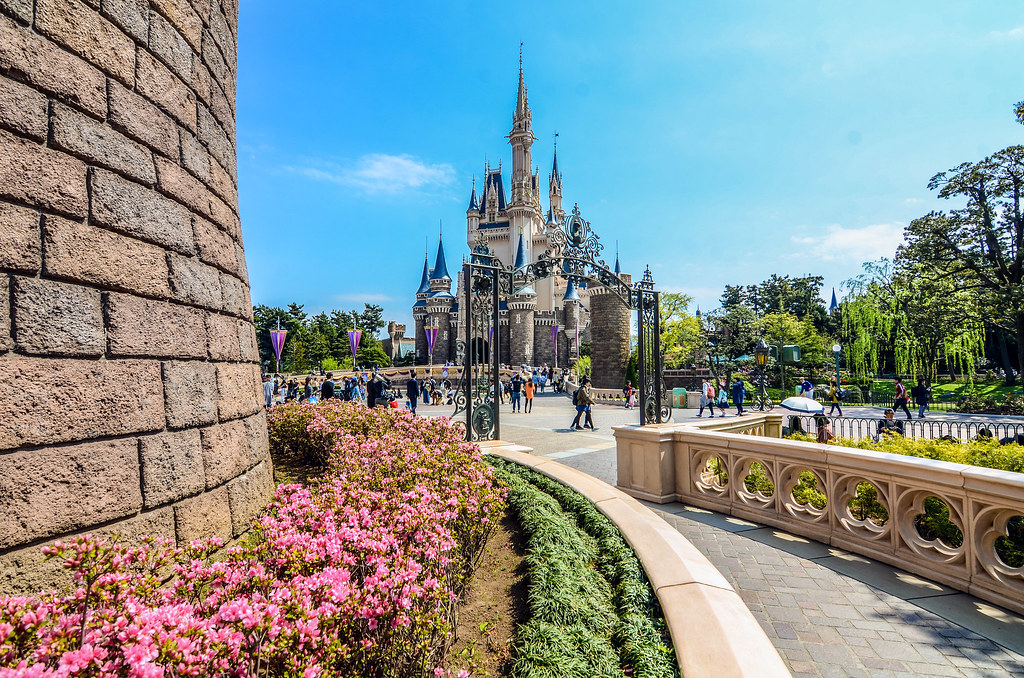 Wall Castle flowers TDL