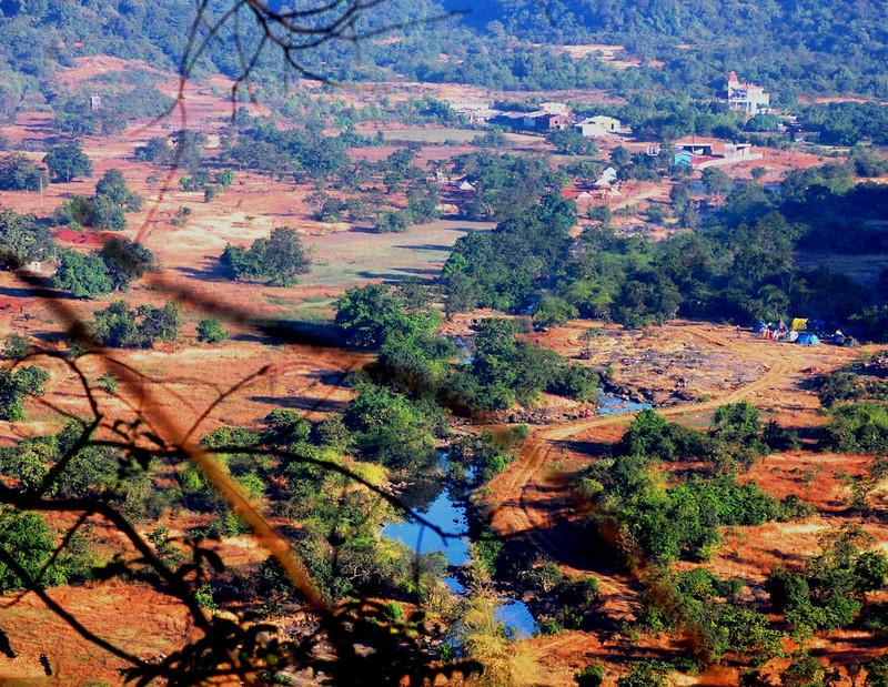 ecosystem---Nature/Landscape