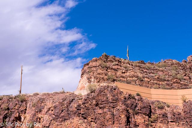Very tall Saguaros on mountain