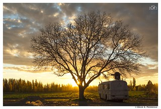 Otoño Patagonico | by omarferreras@hotmail.com