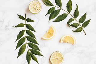 Top view of green plants and lemon slices on marbled background. Tropical concept | by wuestenigel