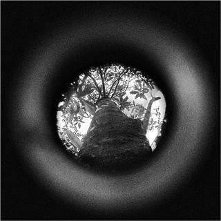 Peep-Hole-#1